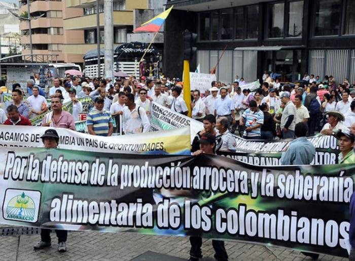 Arroceros de Colombia comienzan huelga indefinida