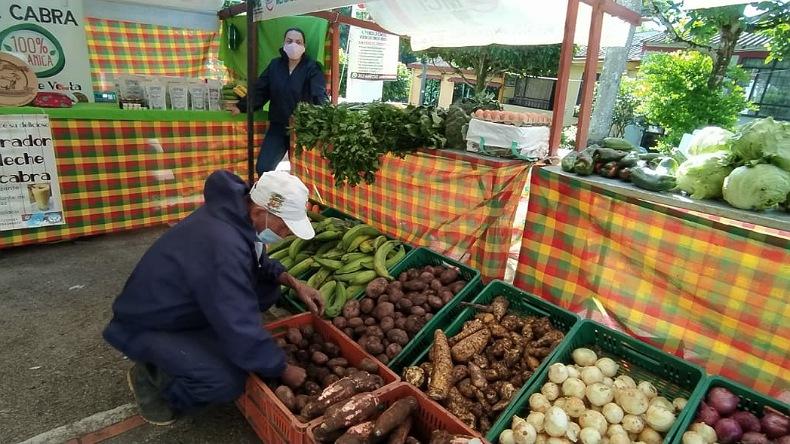 Mercados campesinos moviles